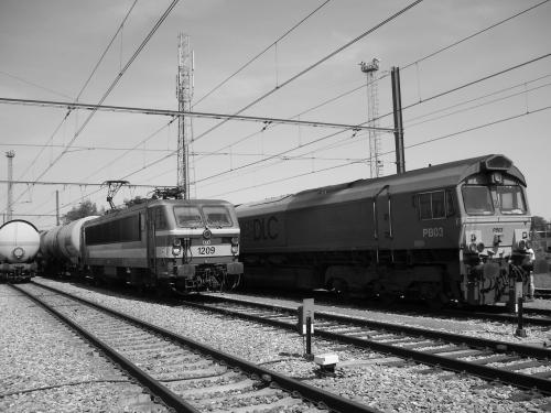 Photos au fil du rail type 12 sncb 005